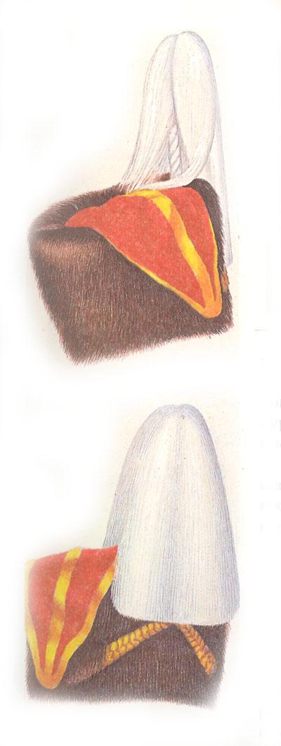 Медвежьи шапки гвардейских гусарских полков